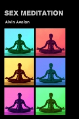 Sex Meditation ebook by Alvin Avalon